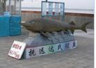 Рыбы. Как помочь рыбам зимой - 6