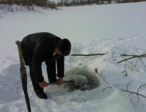 Рыбы. Как помочь рыбам зимой - 15