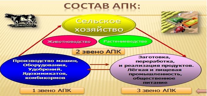 Состав АПК 2.PNG
