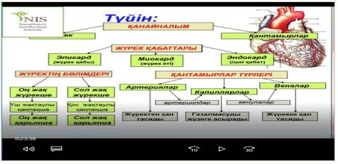 биология түйін