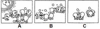 атомы и молекулы.PNG