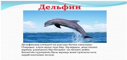 длельфин