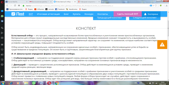 saparova_otbor_3.png