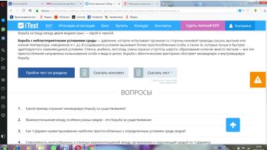 saparova_otbor_4.png