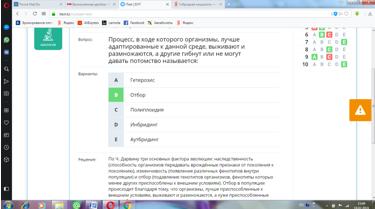 saparova_otbor_5.png