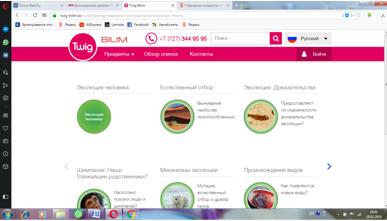 saparova_otbor_7.png